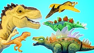 Dinosaurs Kid Connection Tyrannosaurus Rex and Stegosaurus Toys Playset