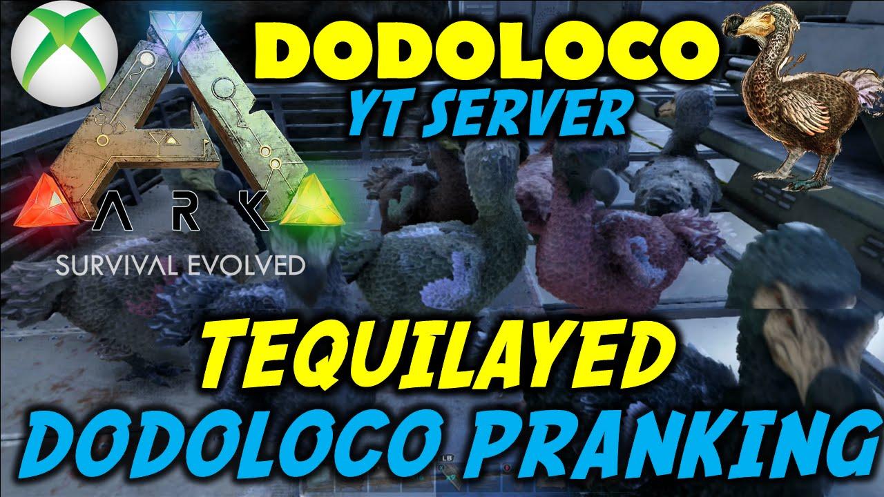 Download ARK Survival Evolved DODOLOCO Server #6 Pranking Tequilayed