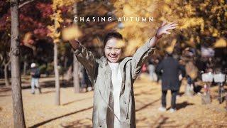 [4k] Chasing Autumn | Korea 2016