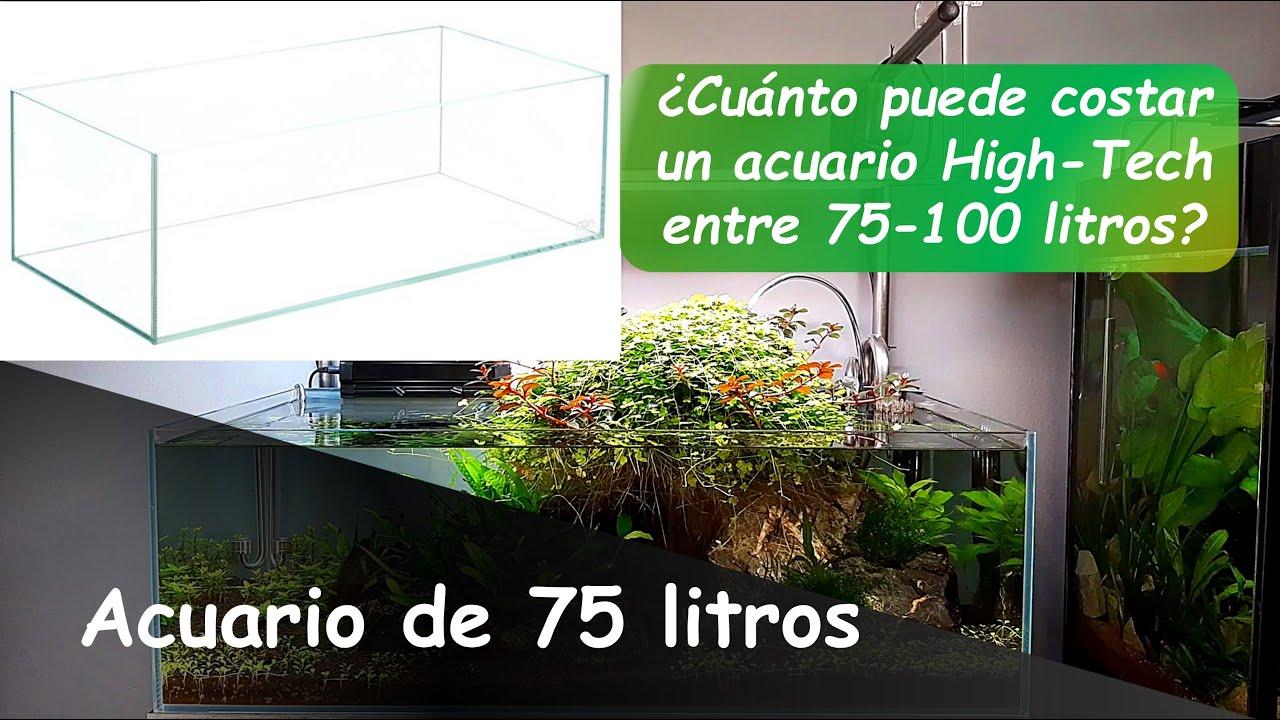 COSTES ACUARIO DE 75 LITROS ¿CUANTO NOS PUEDE COSTAR UN ACUARIO HIGH-TECH ENTRE 75 Y 120 LITROS?