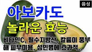 [#아보카도효과] 아보카도의 놀라운 효능 10가지 (비…