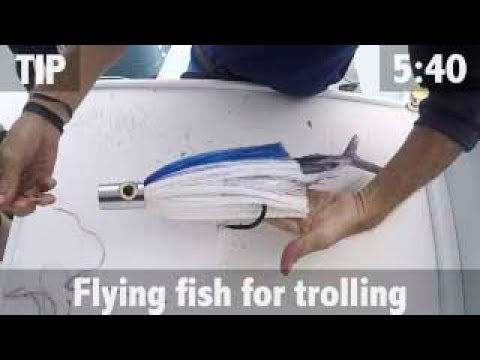 RIGGING FLYING FISH FOR TROLLING