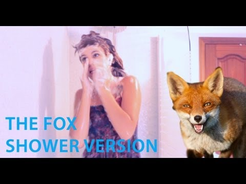 Shower Time | The Fox