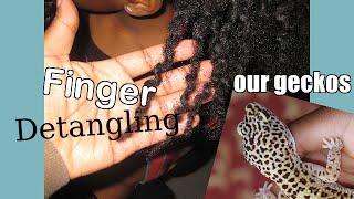 Finger Detangling Ms. Mocha Baby