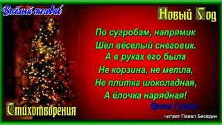 Весёлый снеговик  —Ирина Гурина   —читает Павел Беседин