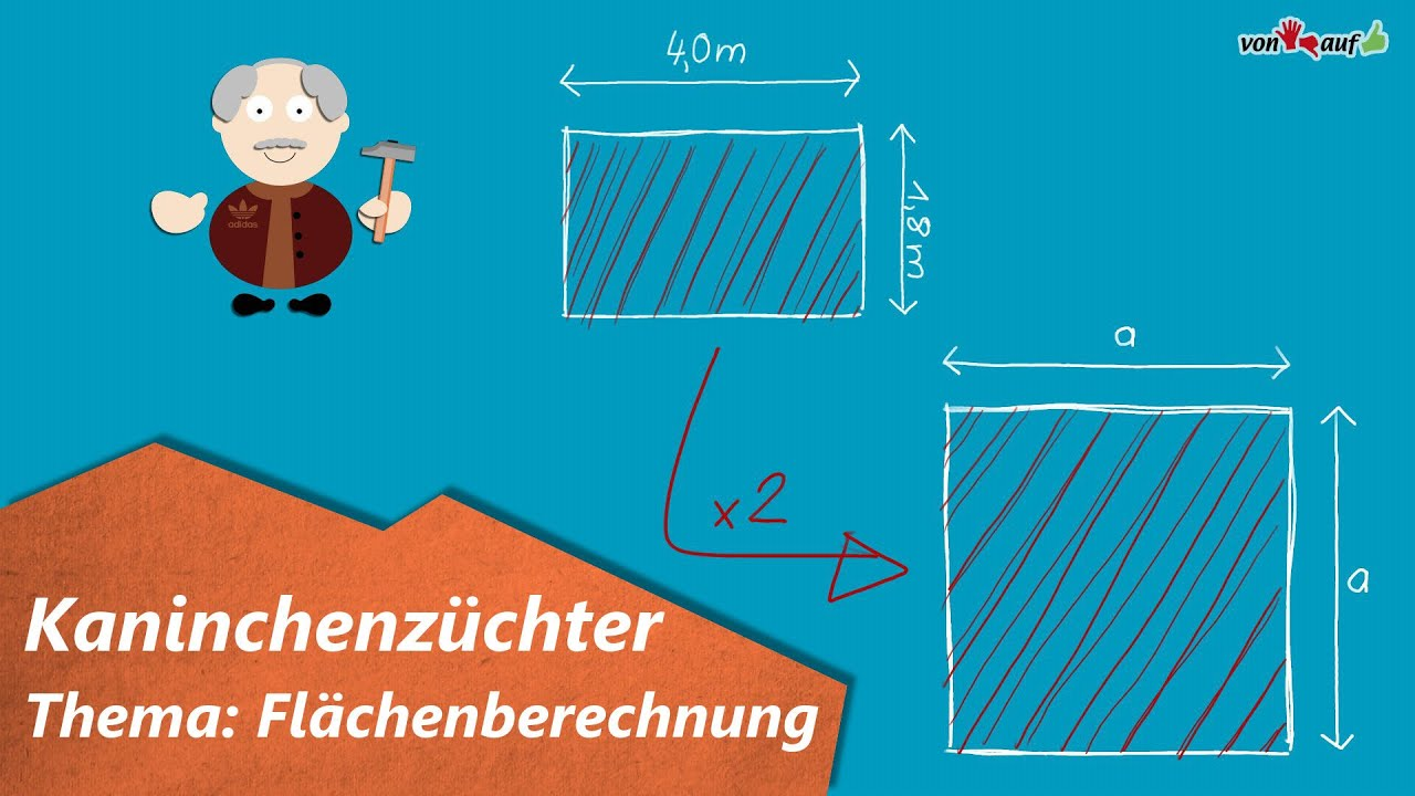 Animationsaufgabe Kaninchenzüchter - Flächeninhalt Rechteck ...