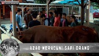 AZAB MERACUNI SAPI ORANG - JURAGAN SAPI CULAS   KUASA ILAHI