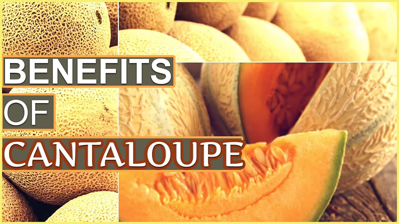 7 Top Health Benefits Of Cantaloupe Kharabooja Youtube Count calories or glycemic index to get a feel on what you. 7 top health benefits of cantaloupe kharabooja
