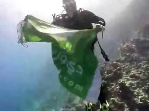 d1g flag under water