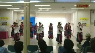 「沙音~SANON~」月下桜舞連 イオン坂出2017.05.03