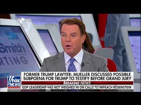 Shep Smith: 'Concerted Effort' To Get Folks On Fox News To Tell Trump Not To Do Mueller Interview