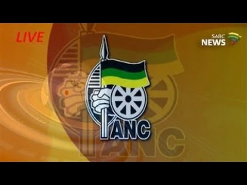 ANC Legislature, Governance policy discussion document: 21 May 2017
