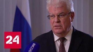Убийство российского посла: международная реакция