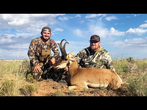 Utah Antelope Hunt (Catch Clean Cook) Most Underrated Meat
