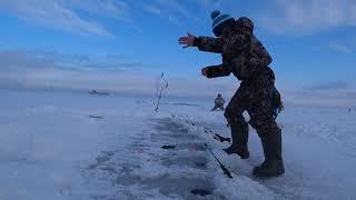 Зимняя рыбалка Корюшка Финский залив