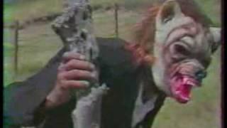 Djo DEZORMO - Voici le loup