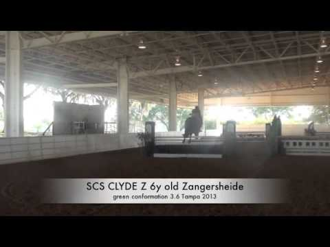 scs clyde z tampa 2013