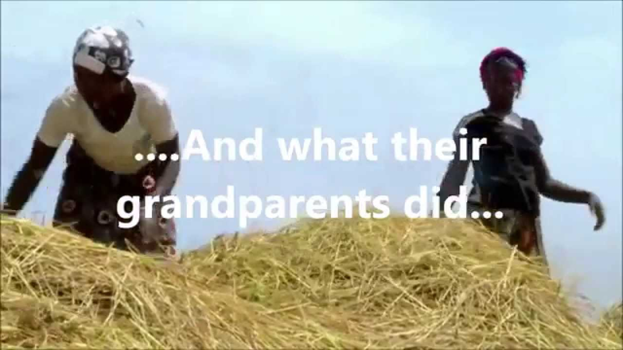Traditional Economy Youtube