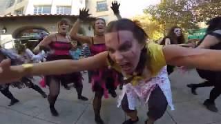 Gambar cover Thriller Flash Mob Dance - Santa Cruz, CA 2017