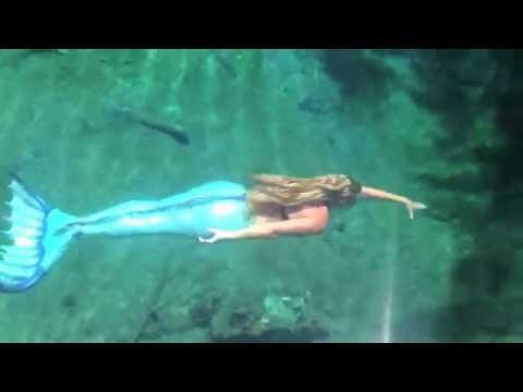 real live mermaid sighting