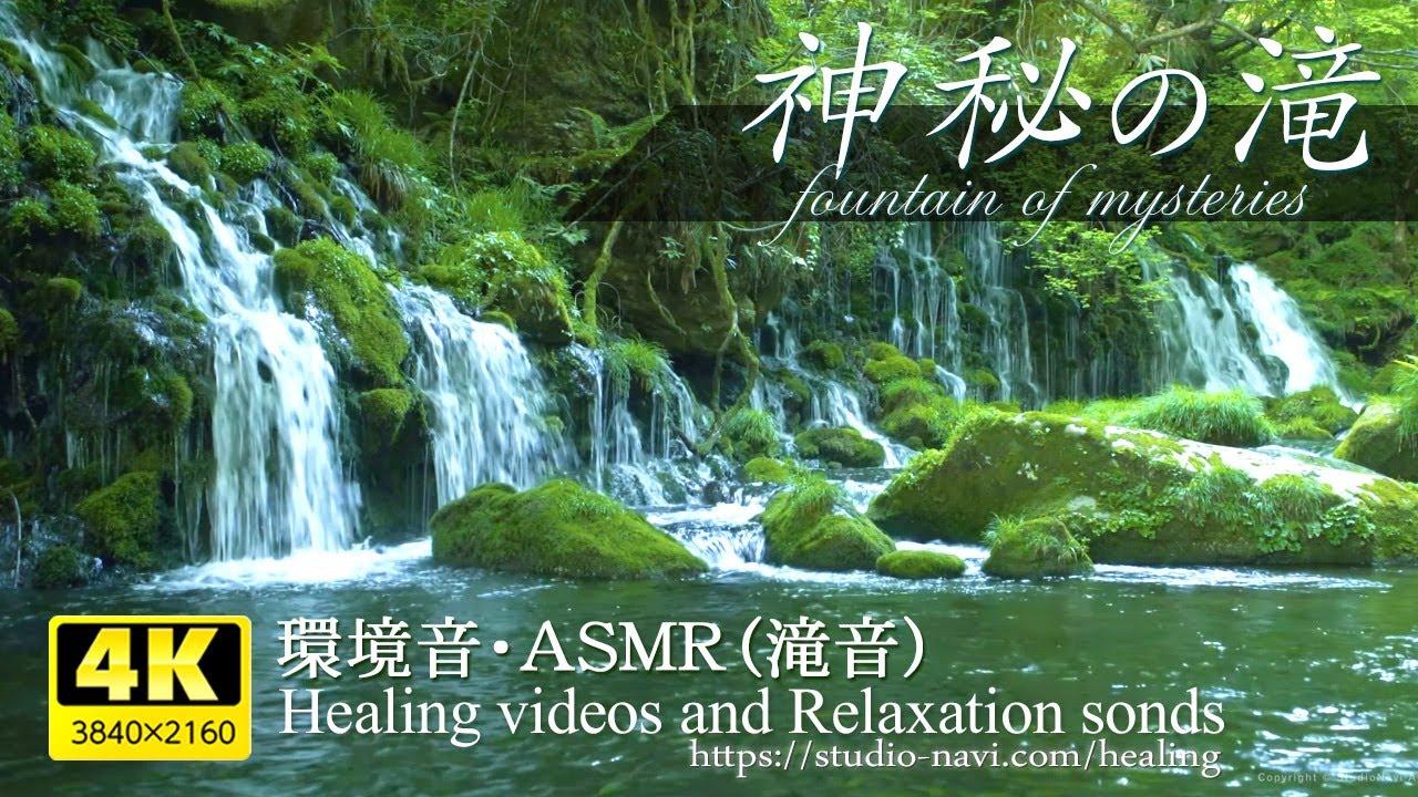 【環境音・ASMR】神秘の滝(元滝伏流水)と川のせせらぎ音癒し3時間・疲れた心身の回復・リラックス効果・勉強中や作業用に、またオフィスなどの癒しの空間作りに。natural sound 3 hours