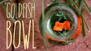Goldfish Bowl - Miniature Aquarium - Polymer Clay Fish - Jewelry Charm Tutorial Thumbnail