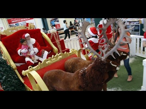Comenzó la Navidad en el mundo  / Ahora Noticias Central - 24 de diciembre