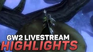 Our First Guild Wars 2 Livestream