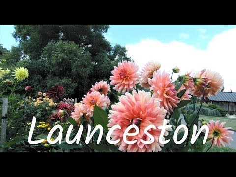 Tasmania Road Trip - Launceston