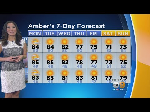 Amber Lee's Weather Forecast (Dec. 11)