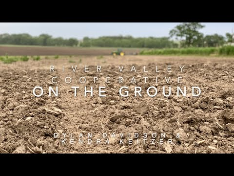 On the Ground: Prevent Plant