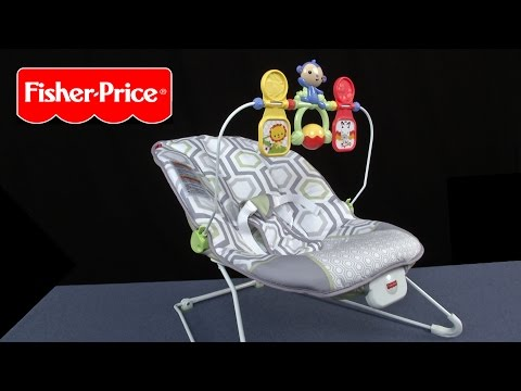 Baby's Bouncer from Fisher-Price