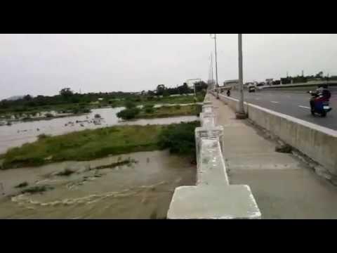 Water flow Ranipet palar river