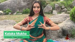Odissi Single Hand Mudras by Tejaswini Gautam
