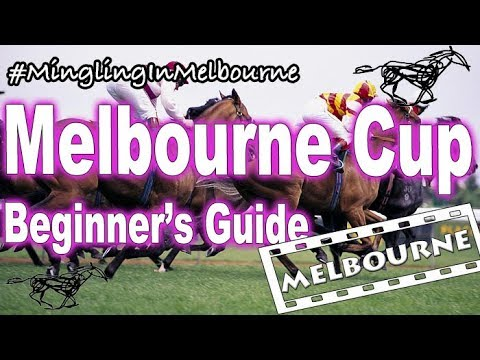 Melbourne Cup Carnival Part 1: Beginner's Guide