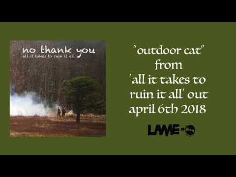 No Thank You - Outdoor Cat