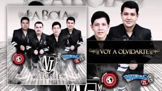 Los Nuevos Ilegales - Voy A Olvidarte (Estudio 2015)