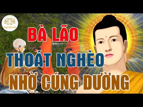 """Kể Truyện Phật Hay - Câu Chuyện""""BÁN NGHÈO""""Bà Lão Thay Đổi Số Phận Nhờ Gặp Phật Pháp -#Pháp_Phật_Giáo"""