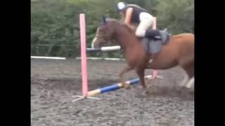 Падения с лошадей, конный спорт, верховая езда, лошади, конкур