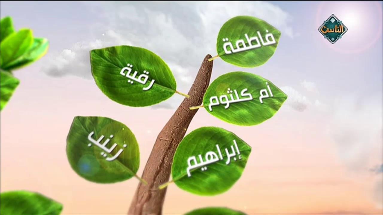 شجرة النبي في أبسط صورة اعرف منها زوجات النبي وأبنائه وذريته صلى الله عليه وسلم Youtube