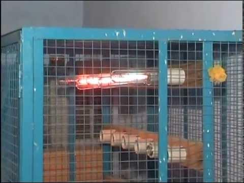 H.I.D. Lamp Manufacturing Unit.Jodhpur, INDIA.
