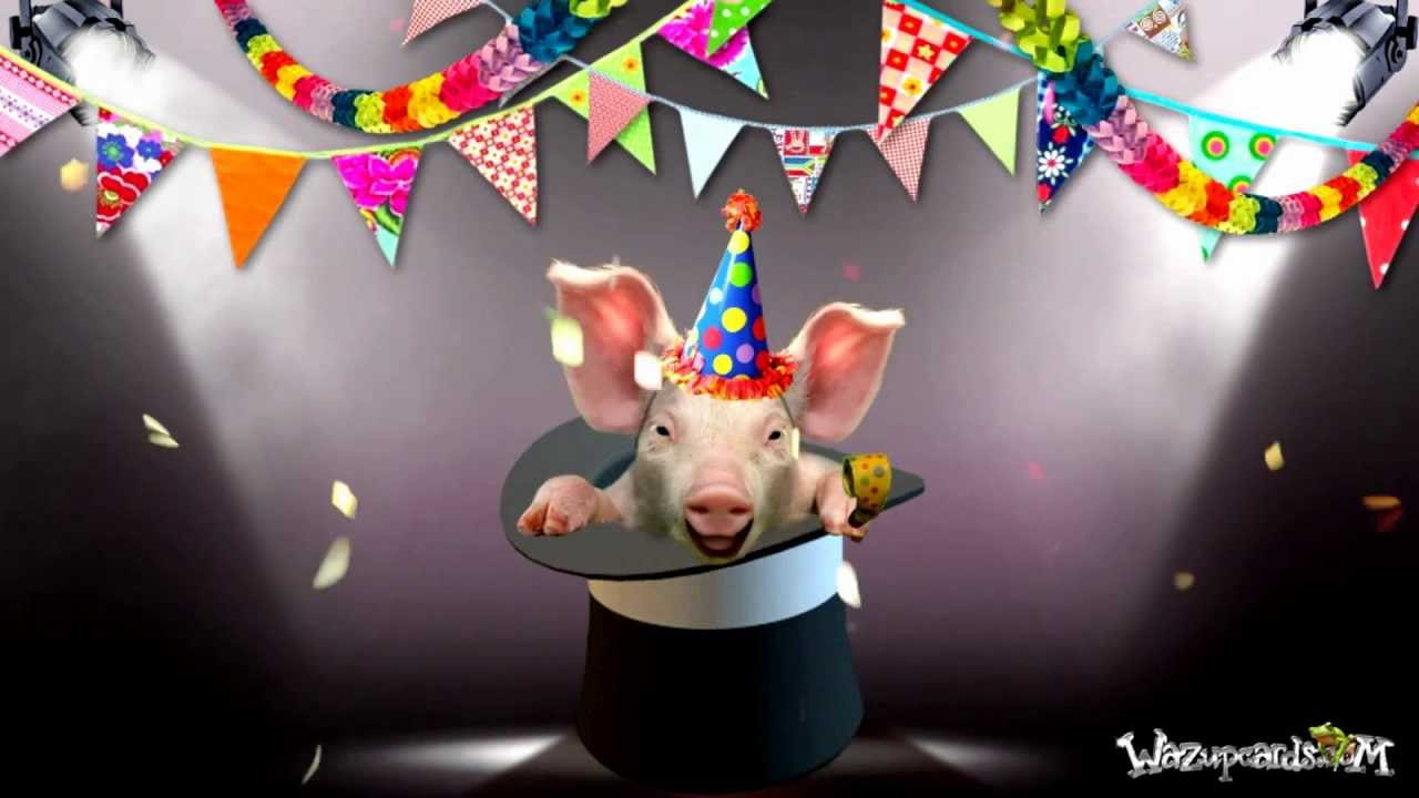 happy birthday magic hat piggy youtube