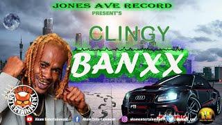 Banxx - Clingy [Audio Visualizer]
