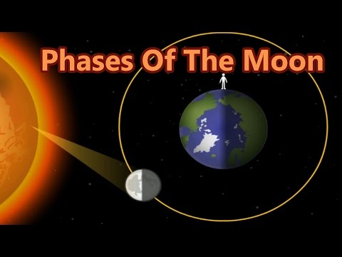 Lunar Cycle, Why The Moon Change Shapes, 8 Phases Of The Moon, Learning Videos For Children