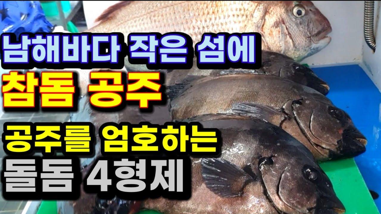 바다흑기사 돌돔, 바다미녀 참돔 회뜨기 / striped beakperch Sashimi , red seabream Sashimi