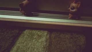 Трейлер фильма Черный Скелет