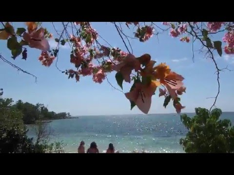 A Day in Little Bay...[Little Bay Cabins - Jamaica]