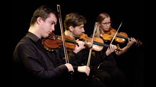 Divertimento in F (part 1) - Mozart - Ataneres Ensemble
