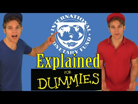 IMF International Monetary Fund's Shocking Truth (VIRAL) | Political Comedy  | Hypocrite Twins