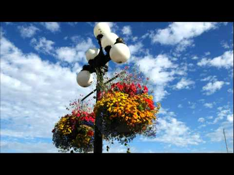 Ayat-Ayat Cinta - Saxophone Instrumental